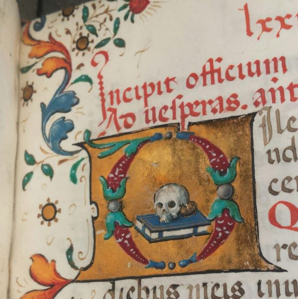 Lewis E 206, f. 89r -- Erin Connelly's favorite skull. Now online in high resolution here: http://openn.library.upenn.edu/Data/0023/html/lewis_e_206.html
