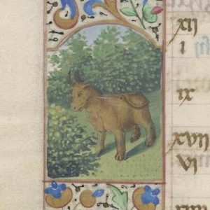 Free Library of Philadelphia Lewis E 212, Book of Hours, Use of Rome, fol. 5v